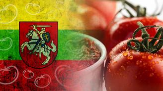 Litvanya yemeklerinde Türkiye salçalarını kullanacak
