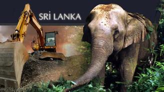 Sri Lanka iş makineleri ithal edecek
