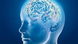Beyin travmaları için büyük buluş!