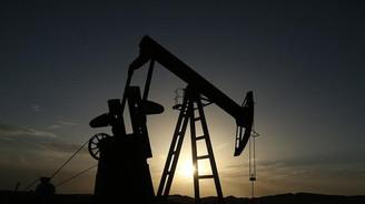 Petrolde kısa pozisyonlar rekor seviyede