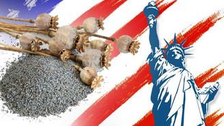 ABD Türkiye'den tohum alacak