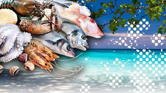 Morityus dondurulmuş deniz ürünleri ithal edecek