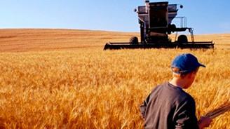 Gıda ve tarım dış ticaretin yüz akı oldu