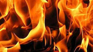 Kanada'da 20 bin civciv yanarak öldü
