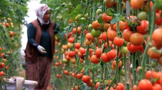Afet mağduru çiftçiye borç düzenlemesi