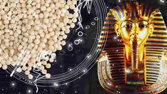 Mısır, kuskus makinesi ithal edecek