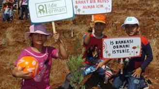 81 İlde 81 Orman projesinde 16 yeni il