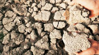 İklim değişikliği ruh sağlığını da etkiliyor