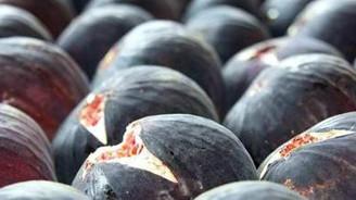 """""""Bursa siyah inciri"""" ABD pazarına açılıyor"""
