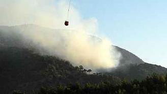 Milas'ta 4 dönümlük ormanlık alan yandı