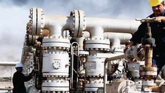 Bulgaristan'la doğal gaz görüşmeleri başlıyor