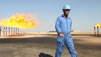 TPAO günlük 10 bin varil ham petrol üretiyor