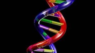 İnsanların DNA proteinlerini analiz edecekler