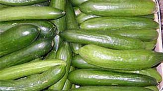 İstanbul'da en çok salatalık zamlandı