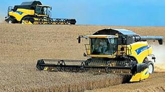 Buğday ve arpa üretimi arttı
