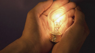 Hayvansal atıklardan elektrik üretilecek