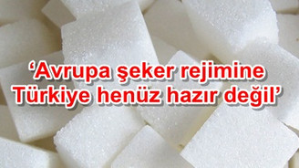 'Avrupa şeker rejimine Türkiye henüz hazır değil'