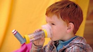 Lifli besinler astım tedavisinde fayda sağlıyor
