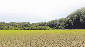 Yağışlar kuraklık riskini ortadan kaldırdı