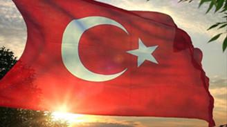 Türk Bayrağı ve Atatürk büstüne saldırı!