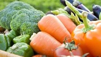 Türkiye organik tarımda 18.sırada