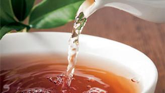 1 kg yaş çayın alım maliyeti 1,14 TL