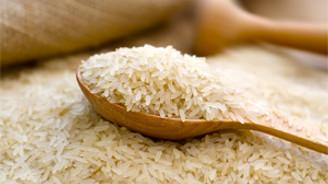 Pirinç ekimi azaldı, üretimi arttı
