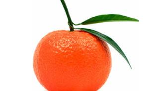 Artan domates fiyatı turunçgili vurdu
