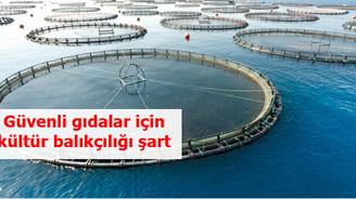 Güvenli gıdalar için kültür balıkçılığı şart