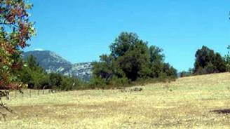 Hazine, Alanya ve Manavgat'ta arazi satıyor