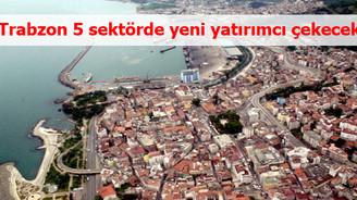 Trabzon 5 sektörde yeni yatırımcı çekecek