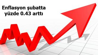 Enflasyon şubatta yüzde 0.43 arttı