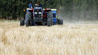 Tarım Kredi Kooperatifleri'nden çiftçiye destek