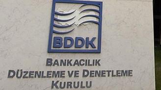 BDDK'dan 2 şirkete yetki