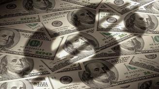 Dolardaki yükselişe Merkez freni