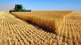 'Tarımda ihracat, çiftiçiye destekle mümkün'