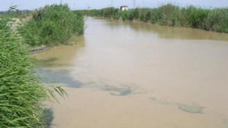 Yağışlar Büyük Menderes Nehri'ni taşırdı