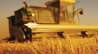 'Tarımda dış ticaret fazlası 6 milyar doları aşacak'