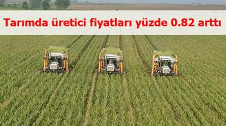 Tarımda üretici fiyatları yüzde 0.82 arttı