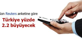 Türkiye'nin yüzde 2.2 büyümesi bekleniyor