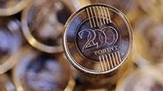 """""""Macaristan'ın GSYH'sinde yüzde 1-1,5'i oranında tasarrufa ihtiyacı var"""""""