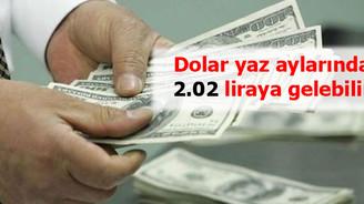 """""""Dolar yazın 2.02'ye gelebilir"""""""
