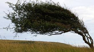 Meteorolojiden şiddetli rüzgar uyarısı!