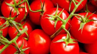 Ekimde zam şampiyonu domates