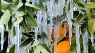 Meteorolojiden buzlanma ve don uyarısı