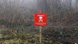 Bosna Hersek'te 'mayın' tehlikesi