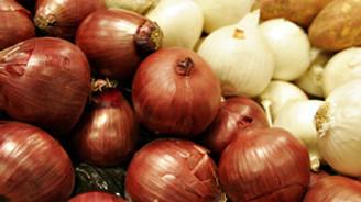 Soğan tarlada kaldı, domates 10 kuruşa düştü