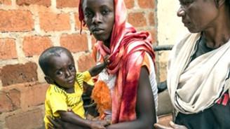 Gine'de Ebola salgını yayılıyor