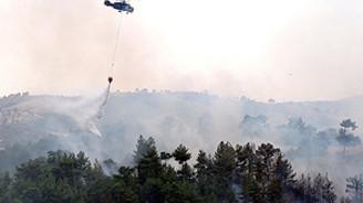 Kanada'da orman yangınları