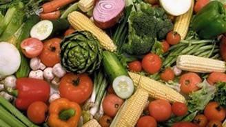 'Rusya'ya ihracat, tarım sektörüne önemli girdi sağlar'
